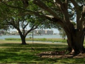 Private 5.5+ Acres on Intracoastal In Seminole