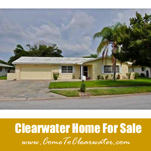 Clearwater Homes For Sale - Seagull Drive
