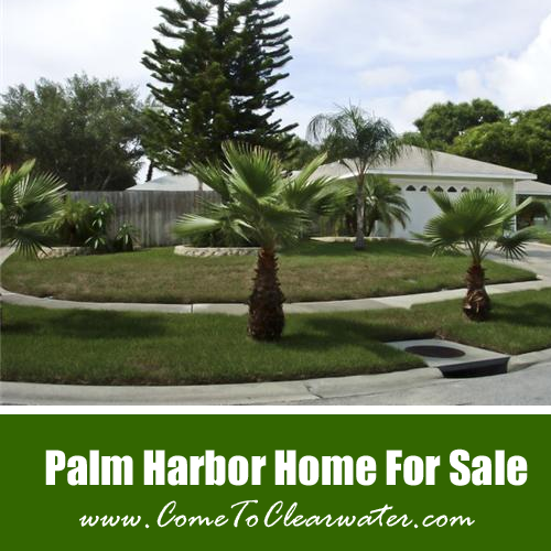Palm Harbor Homes For Sale - 1755 Wisconsin Avenue