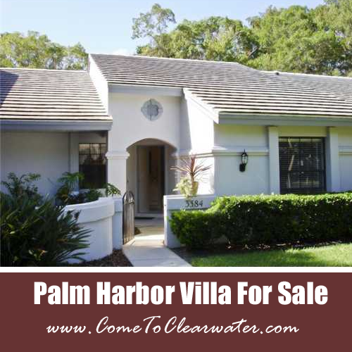 Palm Harbor Villa For Sale - Killdeer