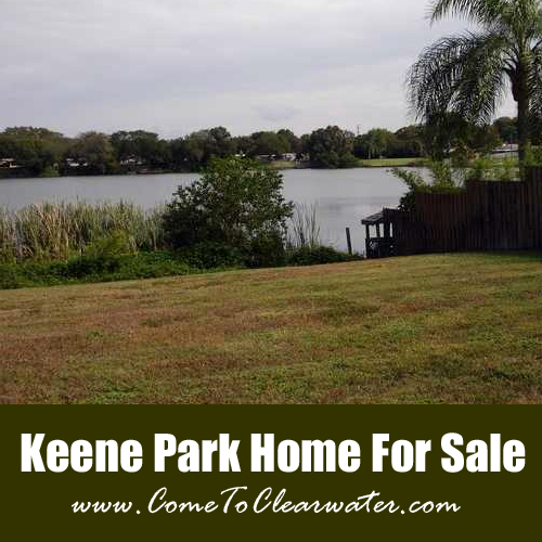 Keene Park Home For Sale - 565 E Park Drive