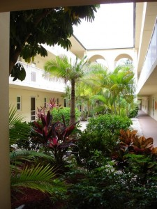 Tropically landscaped courtyard