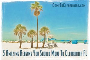 3 Amazing Reasons You Should Move To Clearwater FL