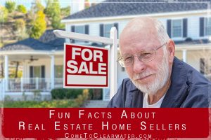 Fun Facts About Real Estate Home Sellers